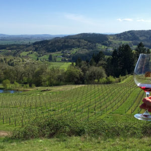 Wine Country Tour